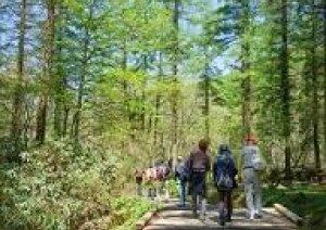 4カ月半振りに岡山県立森林公園オープン